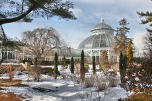 New York Botanical Gardens, The Bronx