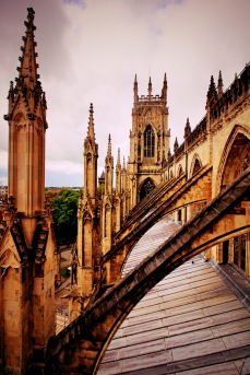 York-United-Kingdom-15
